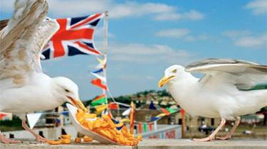 Win tickets to 'The Great British Seaside' Photography Exhibition at the National Maritime Museum