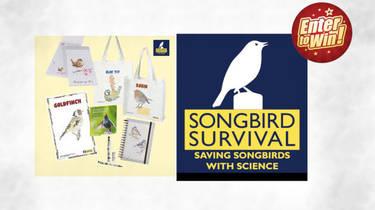 WIN a SongBird Survival Bundle