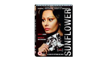 HD Re-mastered SUNFLOWER DVD starring Sophia Loren