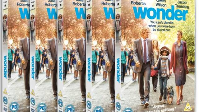 Win Wonder on DVD