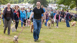 DogFest returns to Arley Hall, Cheshire on 18-19 June