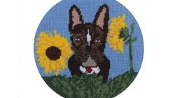 Win Cindy Lass's Celebrity 'Pawtrait' Hank the Dog as a Needlepoint Kit