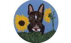 Win Cindy Lass's Celebrity 'Pawtrait' Hank the Dog as a Needlepoint Kit