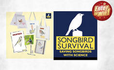 WIN a SongBird Survival Bundle